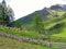 Stock Image : Alpine meadow