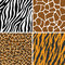 Stock Image : Animal Set - Giraffe, Leopard, Tiger, Zebra Seamless Pattern