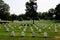 Stock Image : Arlington Cemetery