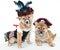 Stock Image : Arrrrrten't We cute?!