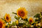 Stock Image : Artistic sunflower