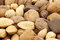 Stock Image : Assortment of fresh nuts