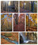 Stock Image : Autumn collage
