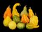 Stock Image : Autumn harvest gourds