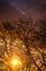 Stock Image : Autumn Landscape