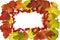 Stock Image : Autumn Leaf Frame