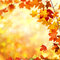Stock Image : Autumn leaves