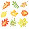 Stock Image : Autumn Leaves Set