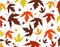 Stock Image : Autumn leaves vector illustration