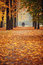 Stock Image : Autumn Park