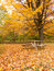 Stock Image : Autumn picnic table in the park