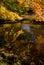 Stock Image : Autumn Reflection