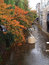 Stock Image : Autumn scene