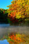 Stock Image : Autumn trees reflected on mist covered Lake