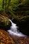 Stock Image : Autunm rushing water