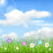 Stock Image : Background with sky, sun, clouds, grass and flowers