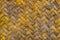 Stock Image : Bamboo background