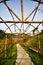 Stock Image : Bamboo corridor