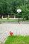 Stock Image : Basketball hoop summer