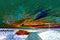 Stock Image : Beach landscape in infrared light