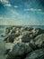 Stock Image : Beach Rocks