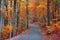 Stock Image : Beautiful autumn road