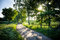 Stock Image : Beautifull rural road