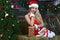 Stock Image : Beauty smiling santa woman near the Christmas tree