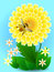 Bee on yellow flower collects honey and pollen.