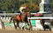 Stock Image : Belle Gallantey Wins The Beldame Stakes