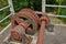 Stock Image : Big brown gears.