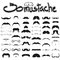 Big set of mustache  on white background set 2 , hipster m