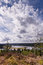 Stock Image : Big sky at Kielder