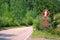 Stock Image : Bigfoot Crossing