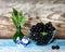 Stock Image : Black currant