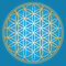 Stock Image : Blue Flower of life