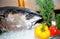 Stock Image : Bluefin tuna