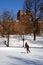 Stock Image : Boston Winter
