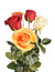 Stock Image : Bouquet with roses