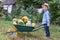 Stock Image : Boy with wheelbarrow in garden