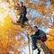 Stock Image : Boys on the Tree
