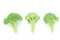 Stock Image : Broccoli