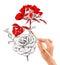 Stock Image : Brush painting a beautiful rose