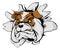 Stock Image : Bulldog breakthrough
