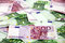 Stock Image : Bunch of 100 and 500 euro banknotes (messy)