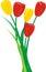 Stock Image : Bunch of tulips