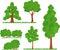 Stock Image : Bush trees grass