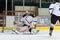 Stock Image : Calgary Flames Goalie Mason McDonald