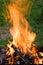 Stock Image : Camping bonfire