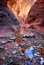 Stock Image : Canyon Colors